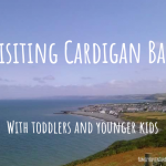Visiting Cardigan Bay With Kids and Toddlers