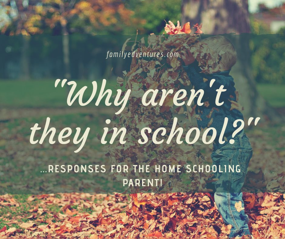 """Why aren't they in school today? "" – responses for the home schooling parent!"