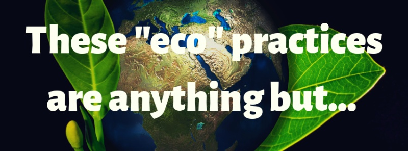 "3 ""eco"" things you probably do that are actually bad for our planet!"