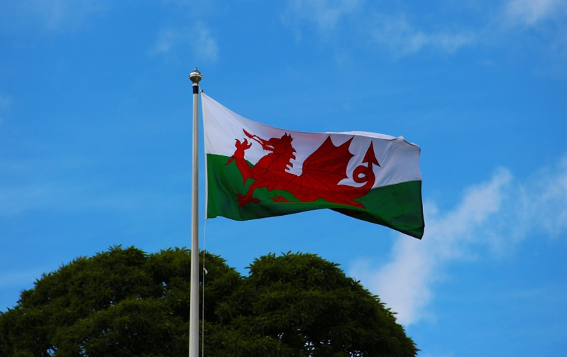 Living in wales flag