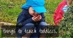 Things to teach toddlers and things NOT to teach toddlers