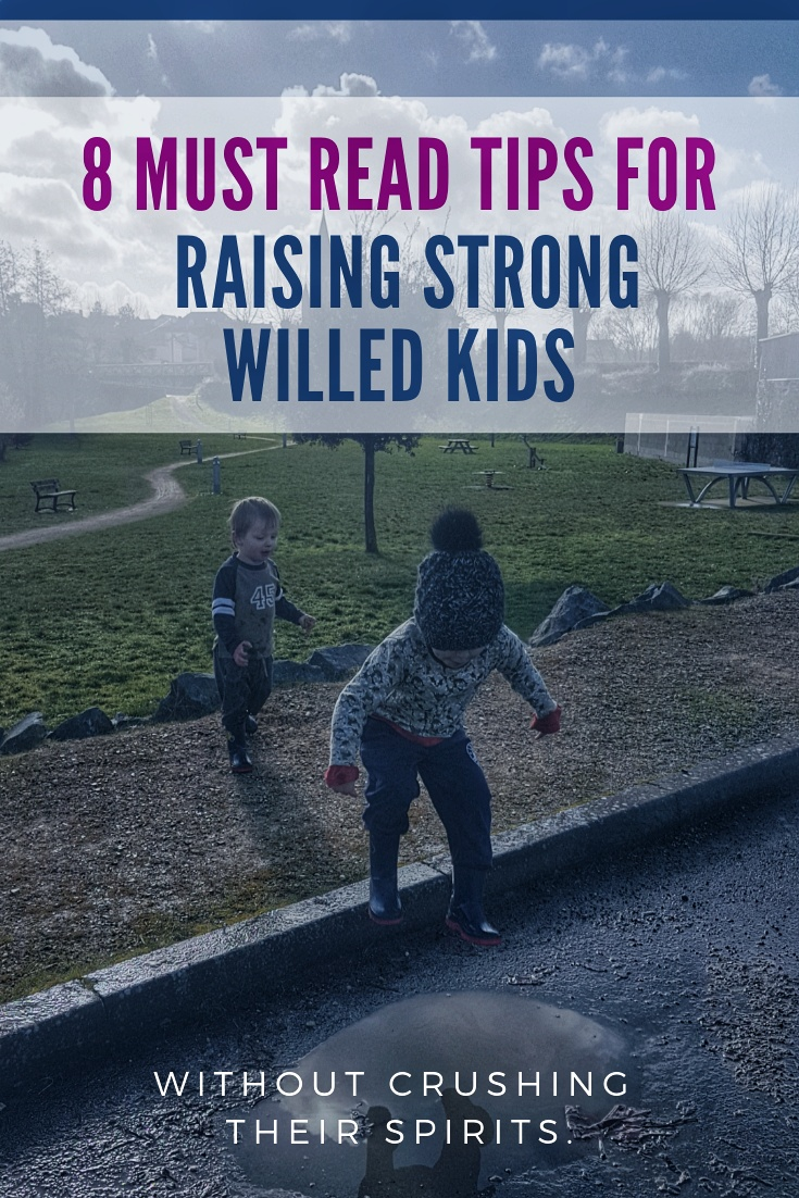 How to parent strong willed child