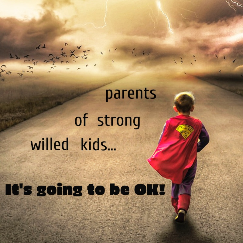 how to parent strong willed kids meme