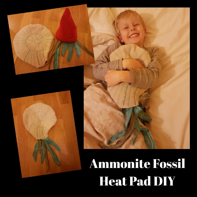diy heat pack ammonite