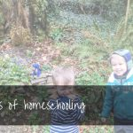 50+ Advantages of Homeschooling | from a teacher turned home educator!