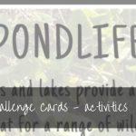 Kids Spring Activities   free printable Spring Challenge Cards