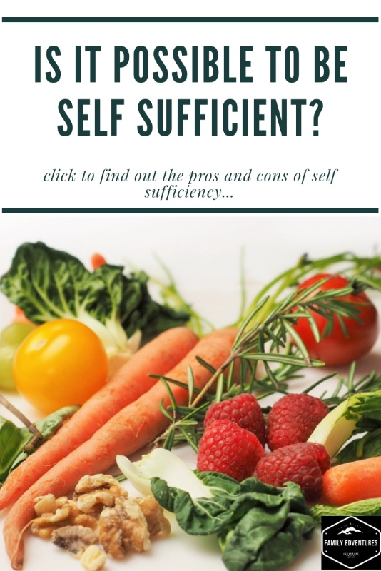 is it possible to be self sufficient homesteading