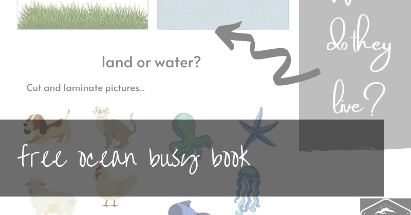Ocean Busy Book Pages | seaside activity pages