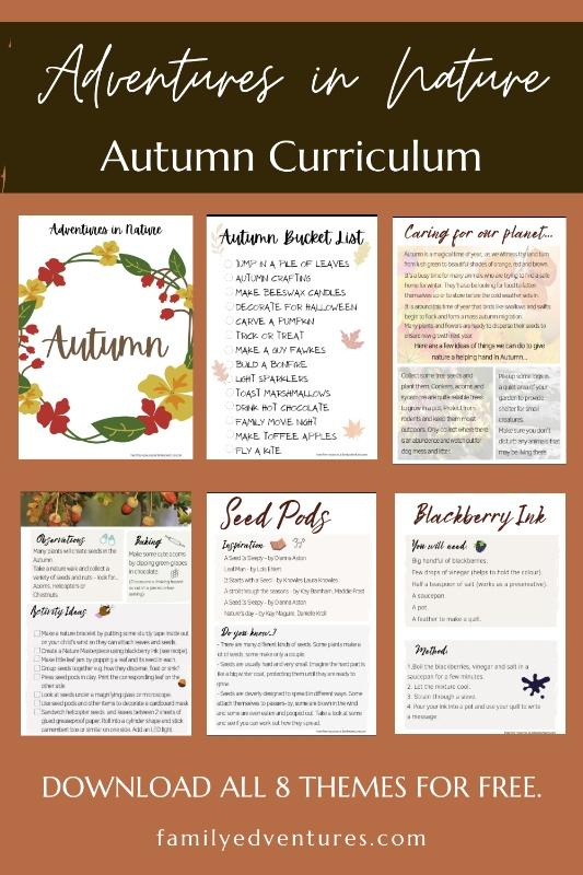 nature-activities-autumn