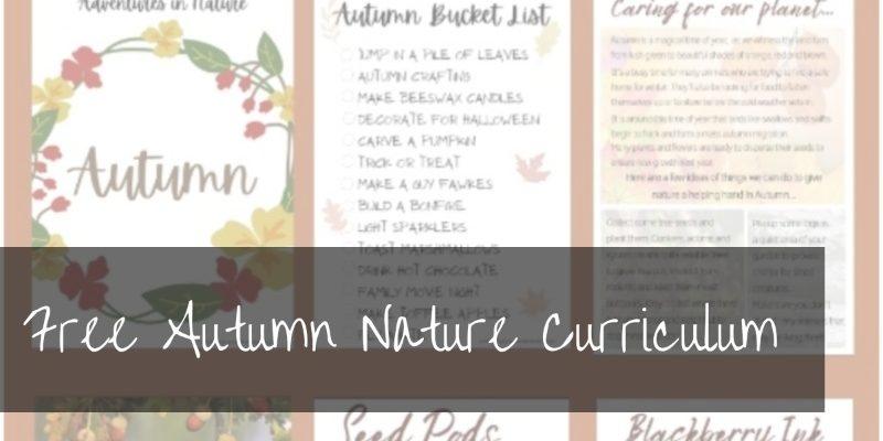 Autumn Nature Curriculum