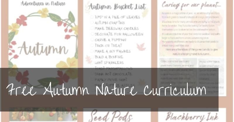 Free Autumn Nature Curriculum | Adventures in Nature