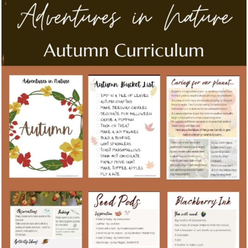 Autumn Nature Curriculum